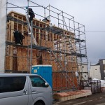 2階構造用合板1